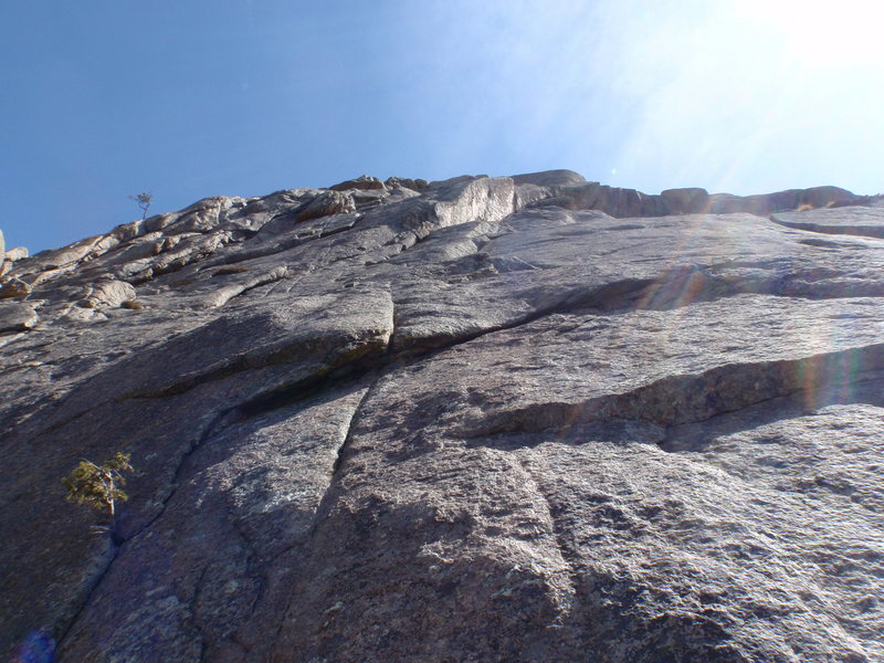 Rock Climbing Photo: Looking up at the Yellow Dihedral from the base.