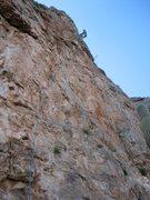 Rock Climbing Photo: The Moose