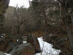 Rock Climbing Photo: One of the worst bushwhacks of all time.  Better w...