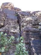 Rock Climbing Photo: Senior Moment 5.5, Willow Springs South