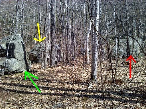This is the view when walking in from the road, to the left of the Axis Boulder is the Barn Door Boulder and to the Right of the Prow Wow Boulder is The Pound Crack Boulder<br> <br> Green arrow- Axis Boulder<br> Yellow arrow - Ships Prow Boulder<br> Red arrow - Prow Wow Boulder