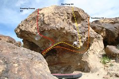 Rock Climbing Photo: The Bird Cage Boulder Topo