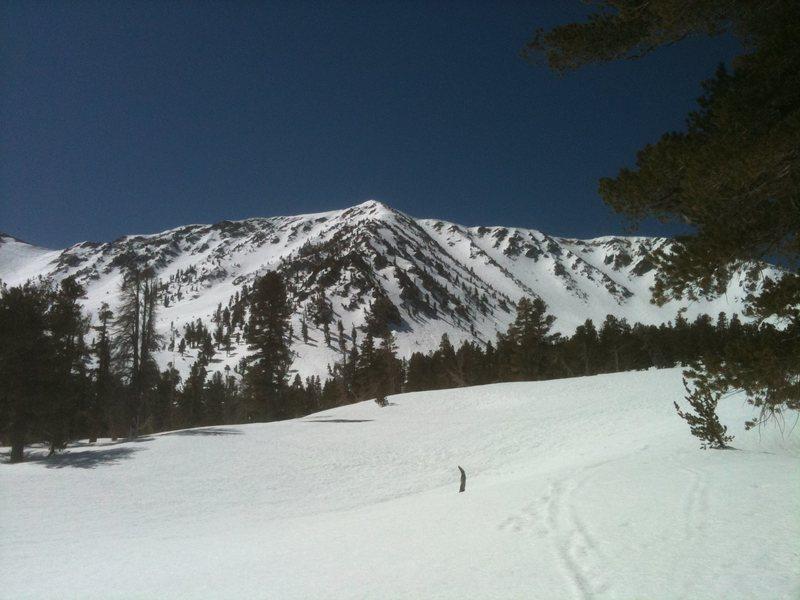 Jepson Peak two weeks ago