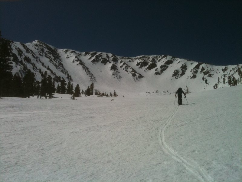 Skinning towards the North side of Jepson