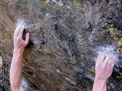 Rock Climbing Photo: The amazing crimps.