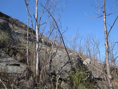 Rock Climbing Photo: Summit Ledges east. This how I finished up via the...