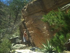 Rock Climbing Photo: jungle