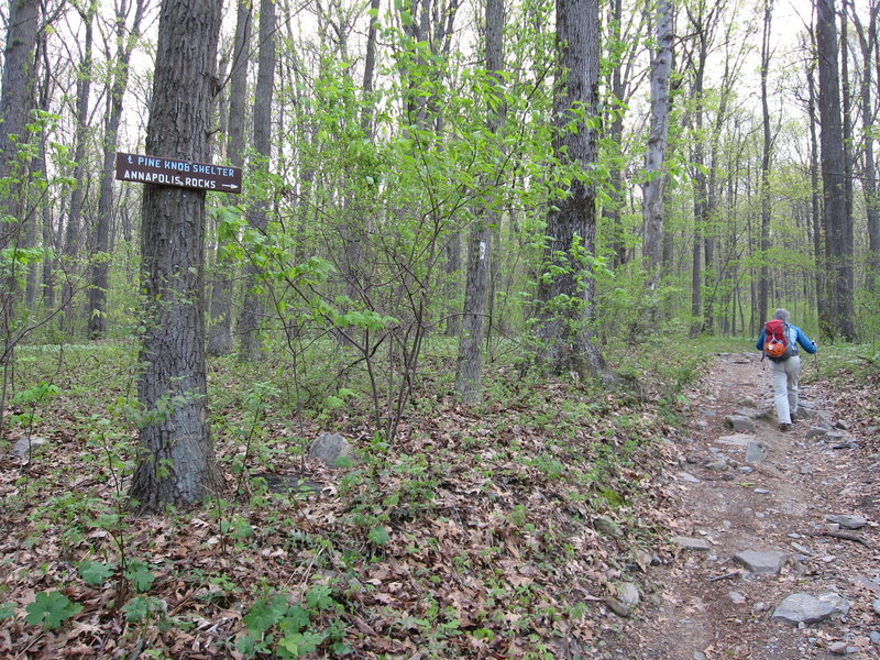 Follow the signs along the AT to Annapolis Rock.