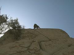 Rock Climbing Photo: Agina getting a little Trad lead practice on Joe B...