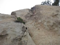 Rock Climbing Photo: Looking up Ant Farm