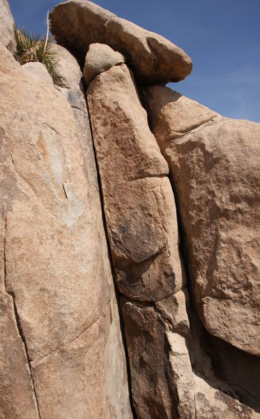 Rock Climbing Photo: 100 feet right of WoW is this nice looking crack