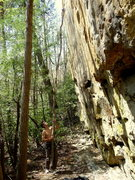 Rock Climbing Photo: If you're lucky, this big stick might still be the...