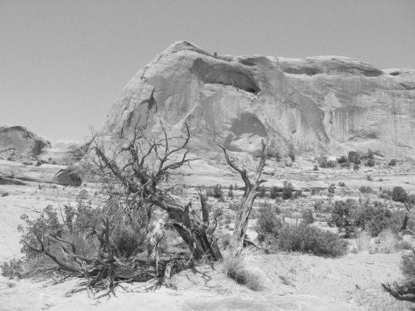 Potash Area in Moab, Utah