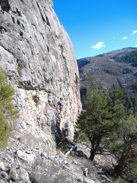 Rock Climbing Photo: Slippin' Sloan at the Surgery Buttress, Glenwood C...