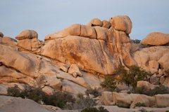 Rock Climbing Photo: The Wall, Left, under good light.