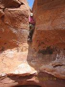 Rock Climbing Photo: Going down?