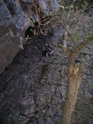 Rock Climbing Photo: My first ever lead outside. 5.6 trad in Big Cotton...