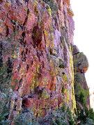 Rock Climbing Photo: Great Race