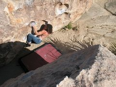 Rock Climbing Photo: Chuckawalla Sit (V6), Joshua Tree NP