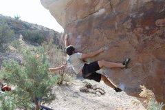 Rock Climbing Photo: Matt sticking the move.