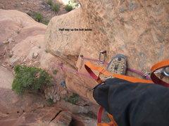 Rock Climbing Photo: Half way up bolt ladder.