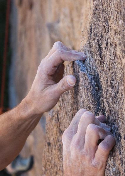 Rock Climbing Photo: Rough rock at the Sunday Matinee Wall