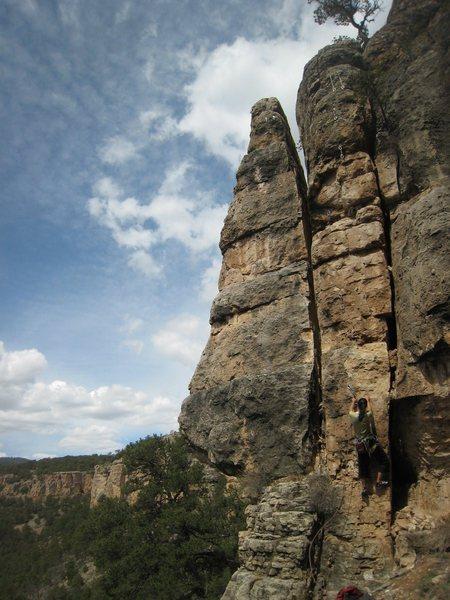 Rock Climbing Photo: Tina starting up Will Purr For Treats.