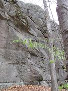 Rock Climbing Photo: Rines
