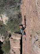 Rock Climbing Photo: Jim having fun on Microskunks with Cholla Coats