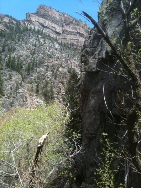 Climbing the Right Tracks Crack at the Fountain Buttress, Glenwood Canyon.