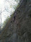 Rock Climbing Photo: Ted higher up on QD