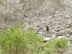 Rock Climbing Photo: Boulder field in McElvoy Canyon in Saline Valley. ...