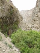 Rock Climbing Photo: The hike into McElvoy Canyon. The wall behind me i...