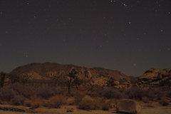 Rock Climbing Photo: Night Sky, Joshua Tree.