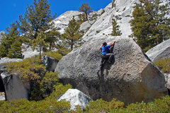 Rock Climbing Photo: Knob-pullin' below Whitney Portal Buttress