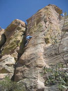 Rock Climbing Photo: Nadia on TR.