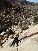 Rock Climbing Photo: pitch 1 of Dappled Mare