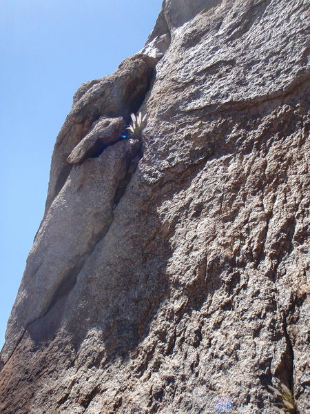 Rock Climbing Photo: Initial crack start on Treiber's Deception