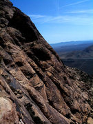 Rock Climbing Photo: view from the top of P1
