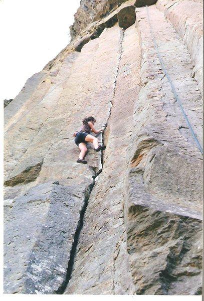 Rock Climbing Photo: wildcat