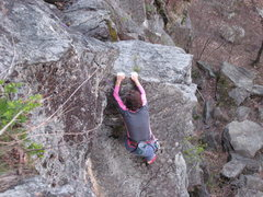 Rock Climbing Photo: White Toad
