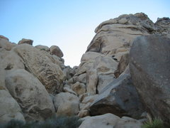 Rock Climbing Photo: The Liver is Evil and Must Be Punished ascends the...