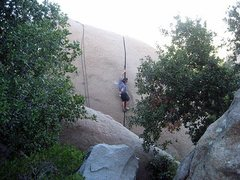 Rock Climbing Photo: The classic robbin's crack.