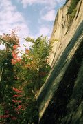 Rock Climbing Photo: An early ascent of Green Party- Justin Preisendorf...