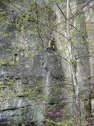 Rock Climbing Photo: Evan Kennedy nearing top of Wish I Were a Golfer (...