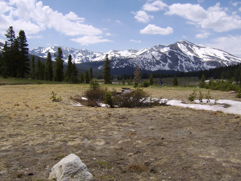 Rock Climbing Photo: Taken from the Hyw 120.  Mammoth Peak on the right...