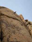 Rock Climbing Photo: Dos Chi Chis top belaying from 1st anchor point