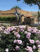 Rock Climbing Photo: Yucca Valley Rose Garden. Photo by Blitzo.
