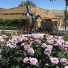 Yucca Valley Rose Garden.<br> Photo by Blitzo.