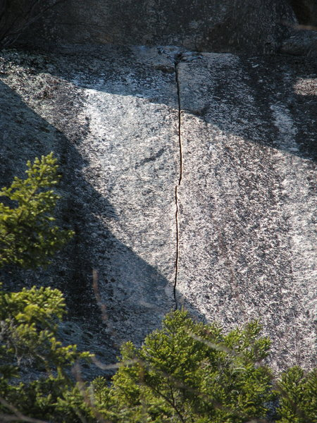 """Rock Climbing Photo: The business of """"Pick Your Crack"""""""
